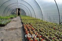 Brand New 14ft X 30ft Polytunnel Kit Heavy Duty Professional Greenhouse Wd